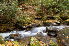 Small Stream of Flowing Water Stock Photo