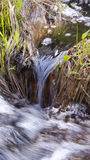 Small stream flows in to a creek. Royalty Free Stock Photos