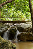 Small stream in the forest, Chaloem Rattanakosin National Park, Stock Photography