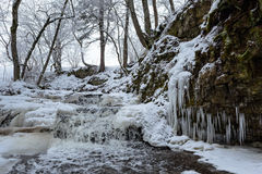 Small stream with icicles Stock Images