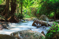 A small stream  with long exposure Royalty Free Stock Image