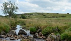 Dartmoor stream stock photos