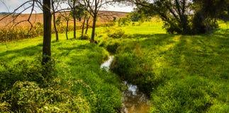Small stream through a meadow in rural York County, Pennsylvania Royalty Free Stock Image