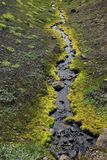 Small Stream in Iceland. Small Stream and Moss somewhere in Iceland Royalty Free Stock Image