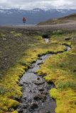 Small Stream in Iceland. Small Stream and Moss somewhere in Iceland Stock Images