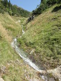 Small stream in the mountains Stock Photography