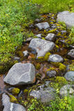 A small stream in northern Siberia. Stones and moss. Stock Photos