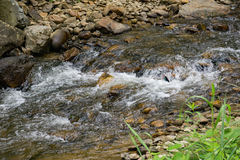 Small Stream and Rocks. Located in the Appalachian Mountains of Virginia, USA with rocks and moss Stock Photos