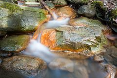 Small stream and rocks. At spring forest Royalty Free Stock Photo