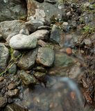 Small stream and rocks. At spring forest Stock Photo