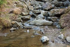 Small stream and rocks. At spring forest Stock Photography