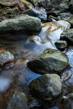 Small stream and rocks. At spring forest Stock Image