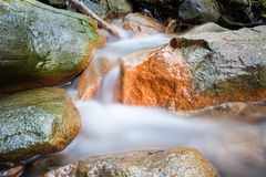 Small stream and rocks. At spring forest Royalty Free Stock Image