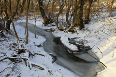 Small stream in the snowy forest Stock Photos