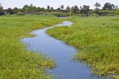 Free Small Stream Through Marshland Stock Images - 22599454