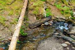 Small stream Royalty Free Stock Images