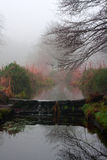 Small stream waterfall on a foggy winters day Stock Photography
