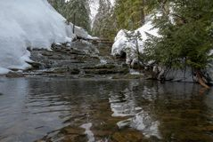 Small stream waterfall surrounded by coniferous trees during spring thaw Stock Photography