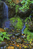 Small stream waterfall Stock Photos