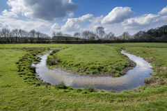 Small stream winds its way through a meadow Royalty Free Stock Photo
