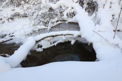 Small stream in winter forest Stock Photography