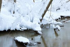 Small stream in winter forest Royalty Free Stock Photo