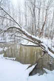 Small stream in winter forest Stock Photo