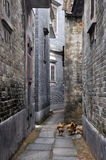 Small street in country of southern china Royalty Free Stock Photography