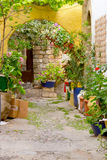 Small Street Full Of Flowers On A Greek Island Stock Photos