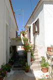 Small street in Greece stock photography