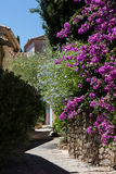 Small street in Grimaud Royalty Free Stock Photography