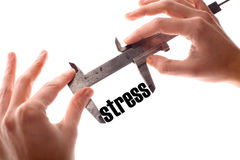 Small stress Royalty Free Stock Photography
