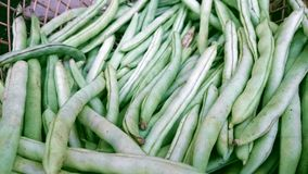 Small string beans Royalty Free Stock Photography