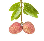 A small string fresh lychees on white background Royalty Free Stock Photo