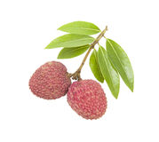 A small string fresh lychees on white background Stock Photo