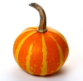 Small Striped Orange Pumpkin isolated Royalty Free Stock Images