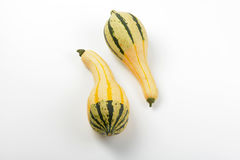 Small striped pumpkins Stock Photo