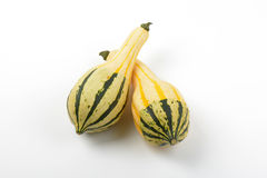 Small striped pumpkins Royalty Free Stock Photography