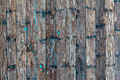 Small strokes of bark on a blue background Stock Photography