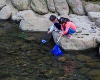 Small students collect garbage from the rive. NAGASAKI, JAPAN - NOVEMBER 14: Nakashima River in Nagasaki, Japan on November 14, 2013. Teachers take smalls Royalty Free Stock Photography