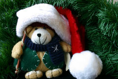 Small Stuffed Teddy Bear Wearing Santa's Hat. This is a small stuffed teddy bear wearing Santa's hat surrounded by evergreen Royalty Free Stock Images