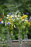 Small summer bouquets Royalty Free Stock Photography