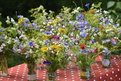 Small summer bouquets Stock Photos