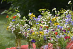 Small summer bouquets Royalty Free Stock Images