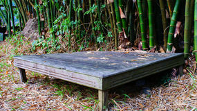 Small table. The small table is on the floor in the junggle.It look like to old wooden royalty free stock photos