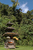 Small temple in the forest of Tamblingam, Bali Royalty Free Stock Photography