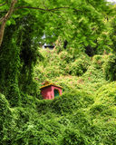 Small temple in the jungle Stock Image