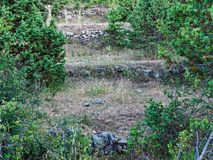 Small Terraced Agricultural Fields. A series of small hand built terraced agricultural fields, plots or paddocks, on a Greek mountain side. Now disused and Stock Photography