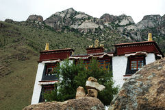 A Small Tibetan Lamasery Royalty Free Stock Images