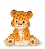 Small tigress Stock Photos